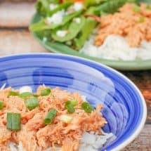 Easy, Frugal BBQ Chicken in the Instant Pot OR Slow Cooker