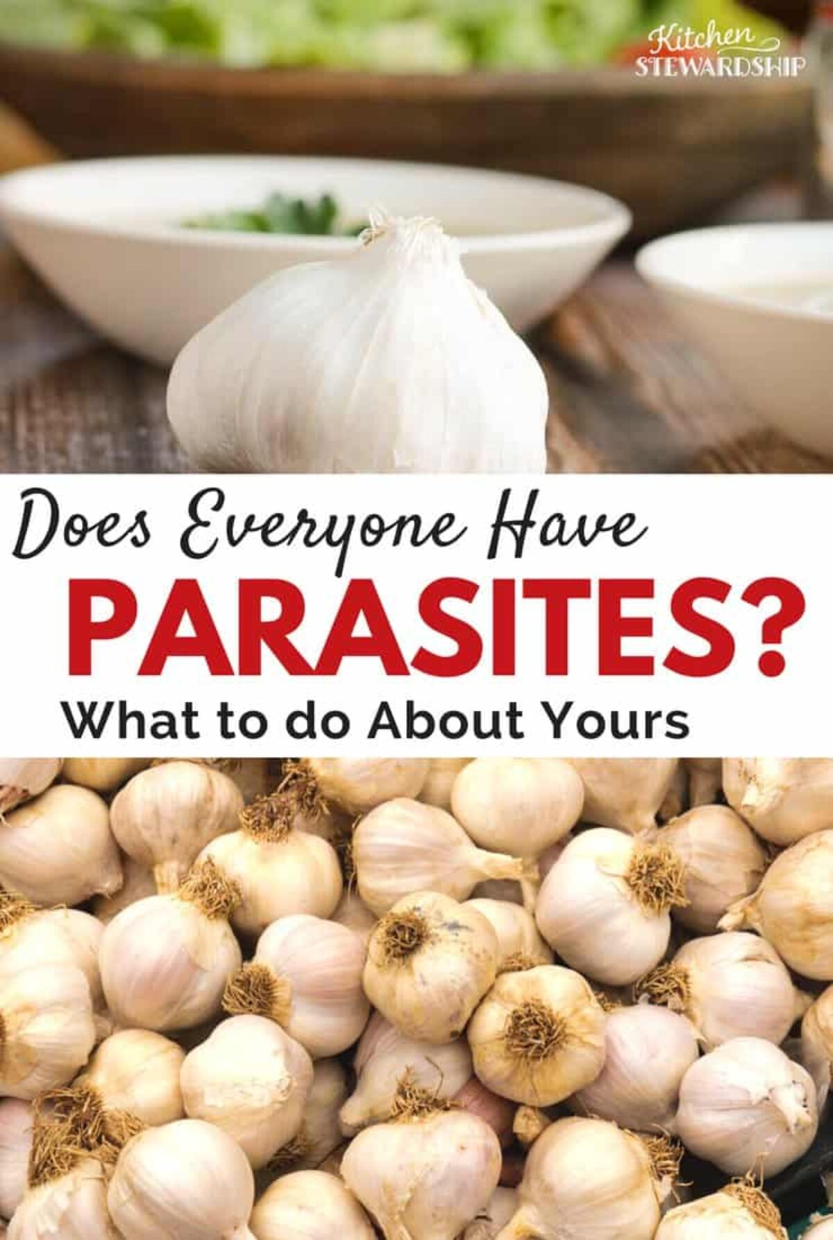 anti parasite soap