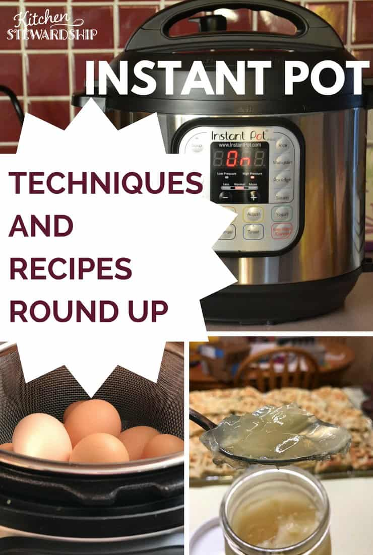 Instant pot tips, techniques and recipe round up - make this new appliance part of your everyday cooking!