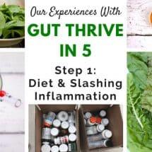Embarking on a Gut Healing Diet (& Hitting the Bumps)