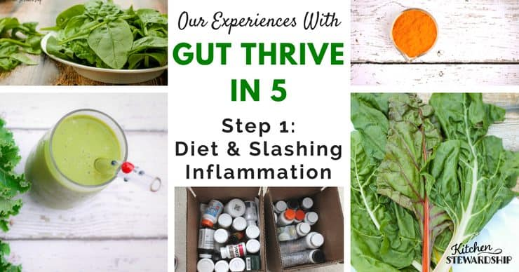 Our experiences with Gut Thrive in 5. Step 1: diet and slashing inflammation
