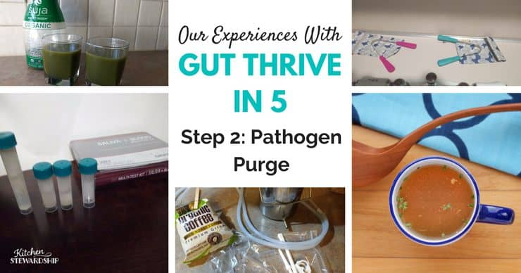 Pathogen purge step 2 of Gut Thrive in 5