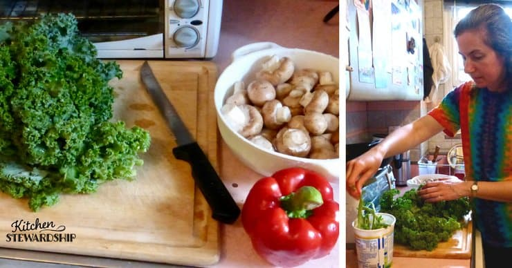 Start composting today. Easy tips and how to make it work in your kitchen. Save money while saving the Earth.