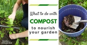 Using Compost to Nourish Your Garden