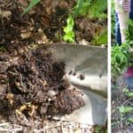 Using compost in your garden - spread out a layer before planting each season and improve soil quality.