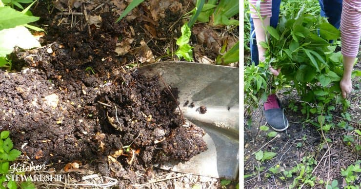 Using compost in your garden spreading pulling