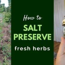 Salt Preserved Fresh Herbs: Simple Ingredients, Endless Possibilities