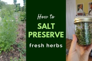 Easy method to store and preserve fresh herbs using salt. Quick, affordable and a time saver for when you are ready to use them! Works for all kinds of herbs like cilantro, basil, sage, oregano, parsley and chives! Easy flavor boost for your homemade foods.