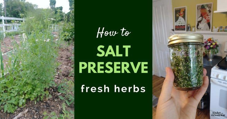 Salt Preserved Fresh Herbs: Simple Ingredients, Endless Possibilities