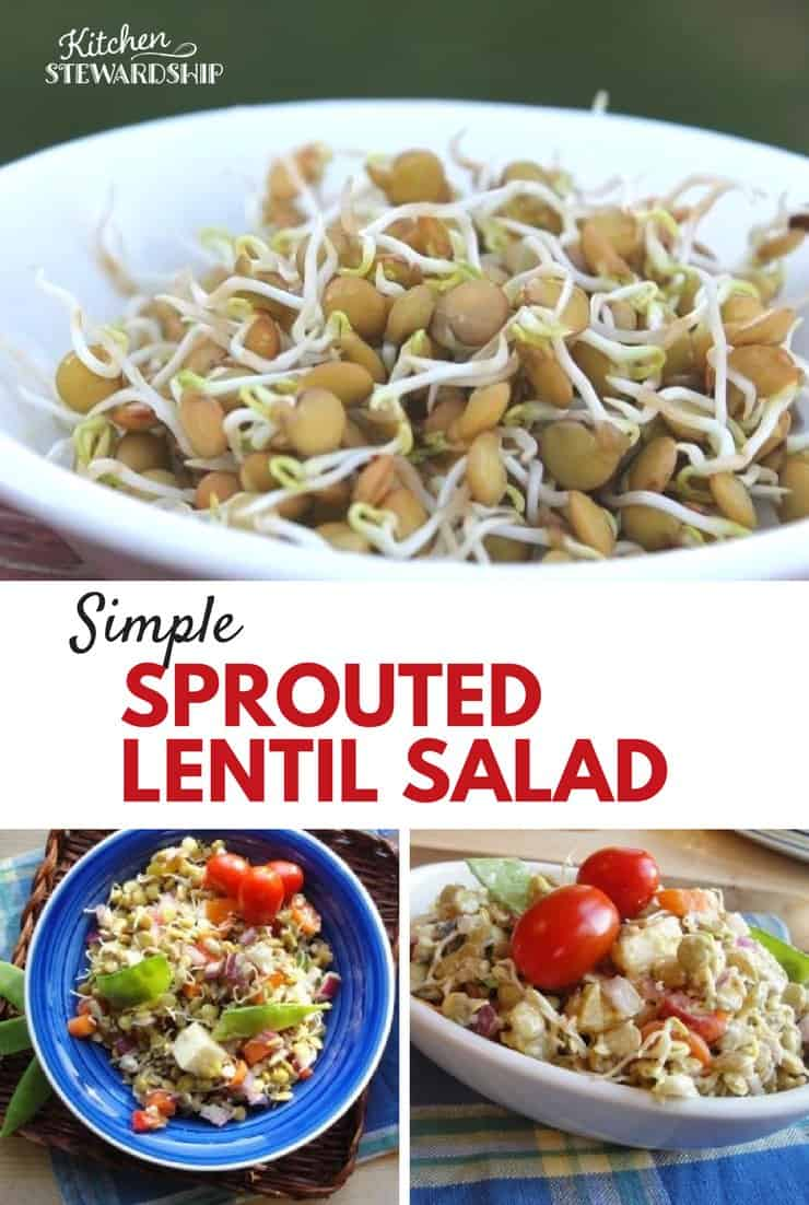 Sprout lentils to maximize both nutrition and frugality. You'll love this simple, nourishing salad packed full of flavor that's frugal to make.