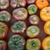 3 Easy Ways to Preserve Tomatoes (that Don't Involve Canning!)