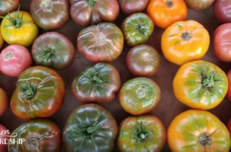 3 Easy Ways to Persevere Tomatoes (that Don't Involve Canning!)