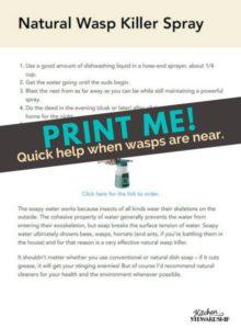 Natural Wasp Killer Spray Printable