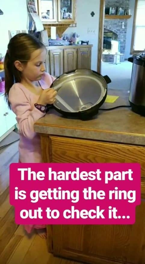 checking the ring of the Instant Pot for cracks