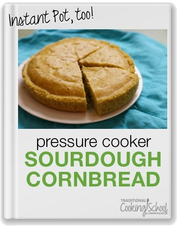 Traditional Cooking School Instant Pot Sourdough Cornbread Pressure Cooker Recipe