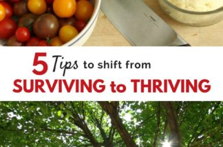 5 Easy Steps to Thrive Even When Life is Crazy
