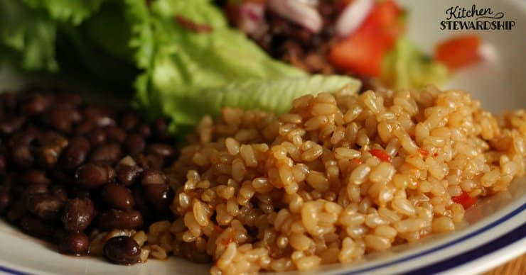 Plate with Instant Pot Mexican brown rice and black beans.