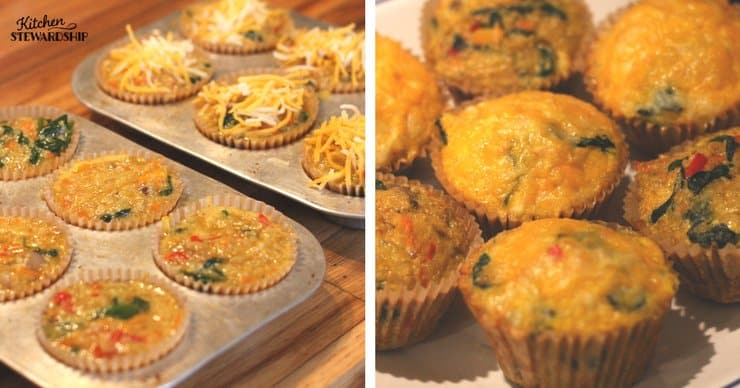 Quinoa, veggie and cheese egg breakfast bites in a muffin tin and on a plate.