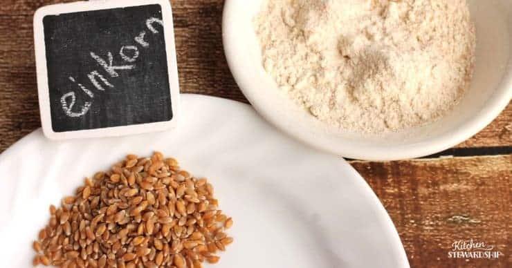 Einkorn grain and flour on white plates.