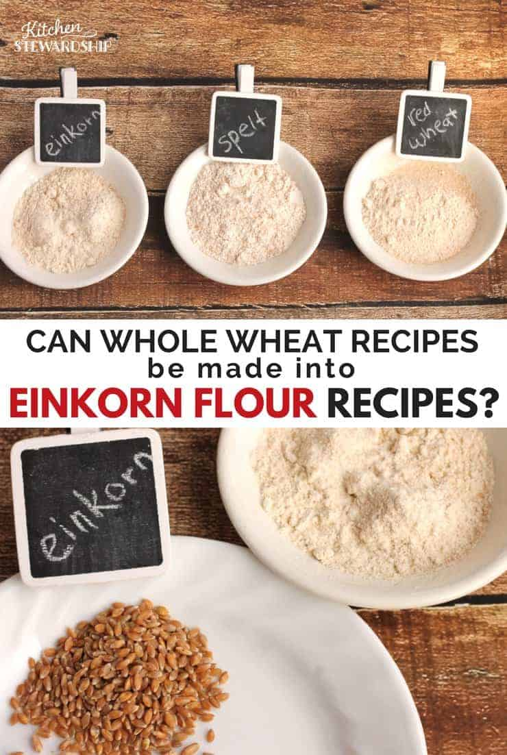 Einkorn flour, spelt flour and red wheat flour in small white bowls. Picture below is einkorn flour and grains on white plates.
