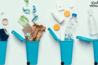 15 Ways KIDS Can Save the Earth