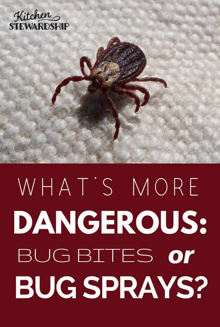 what's more dangerous - bug bites or bug sprays?