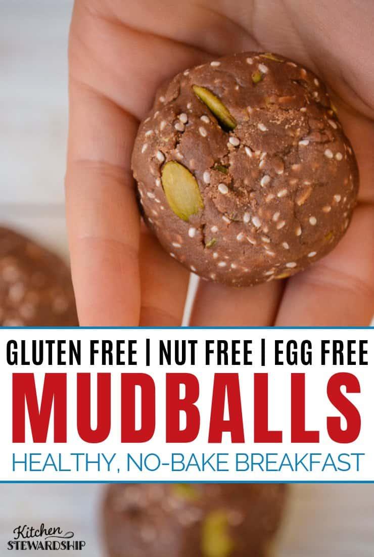 Easy Gluten Free Nut Free Breakfast Mudball Recipe