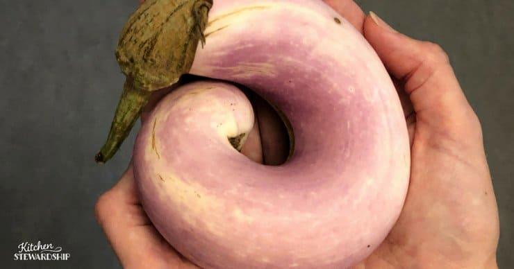 curly eggplant