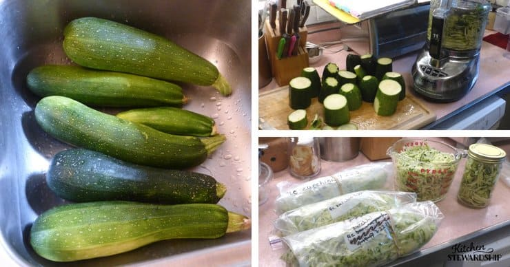 zucchini, in a sink, cut, and shredded for the freezer