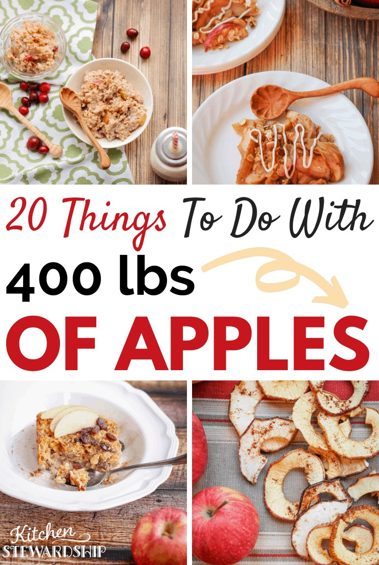 what to do with apples, dehydrated apples