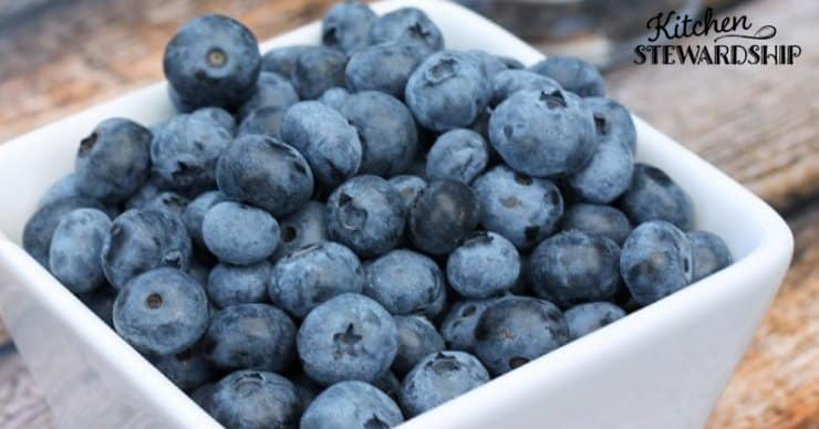 Antioxidant rich bowl of blueberries