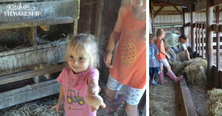 kids helping around the farm