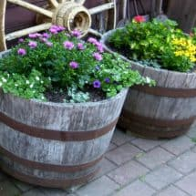 How to Create a Half-Barrel Garden {Guest Post}