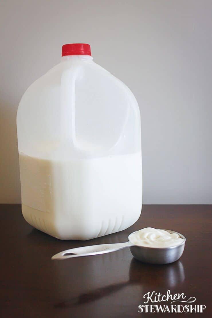Bottle of milk and scoop of yogurt