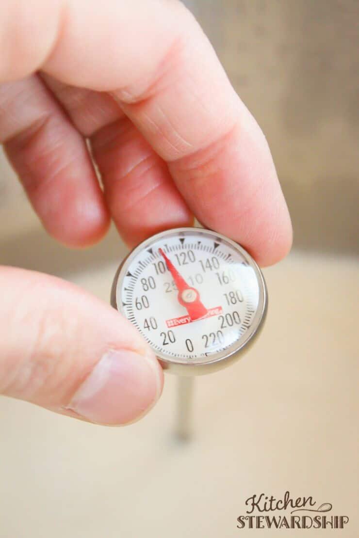 Thermometer in yogurt