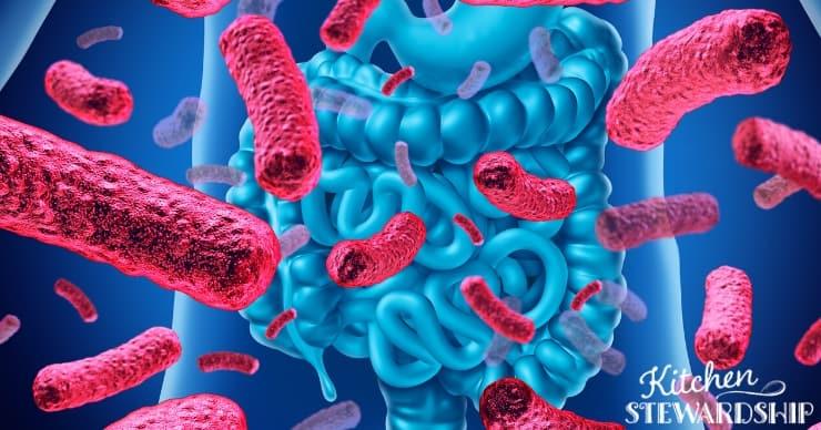 Pathogens in the gut