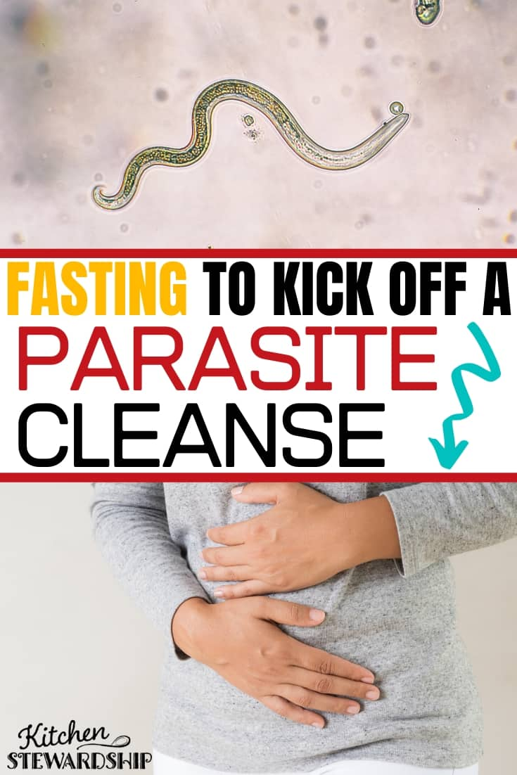 Fasting to Kick off a Parasite Cleanse