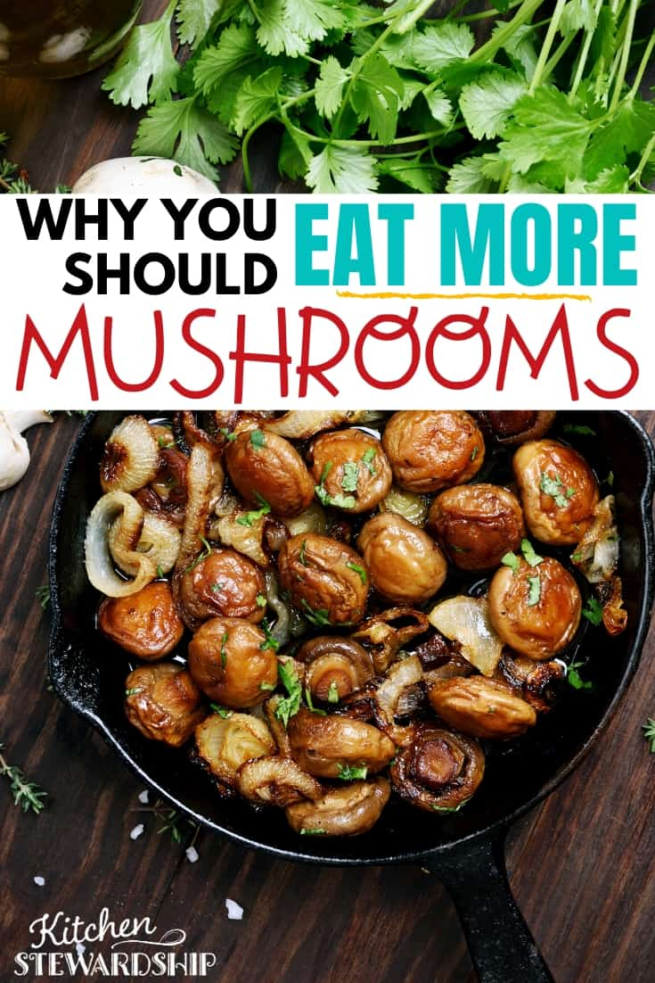 Why you should eat more mushrooms