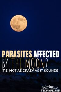 parasites affected by the moon?