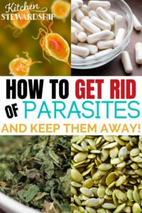 How to get rid of parasites and keep them away!
