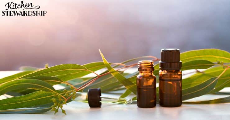 essential oils for parasites