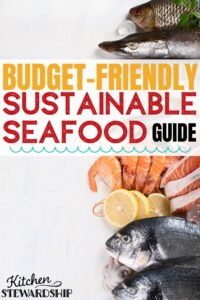 Budget-friendly sustainable seafood guide