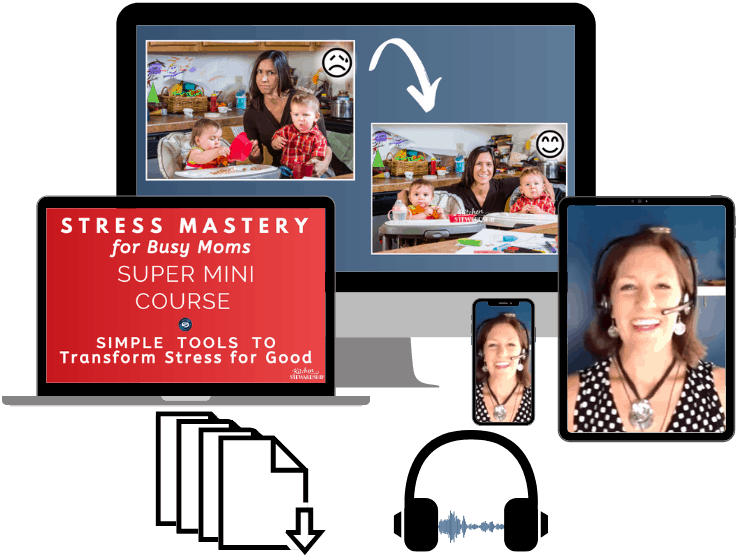 Stress Mastery Course Products