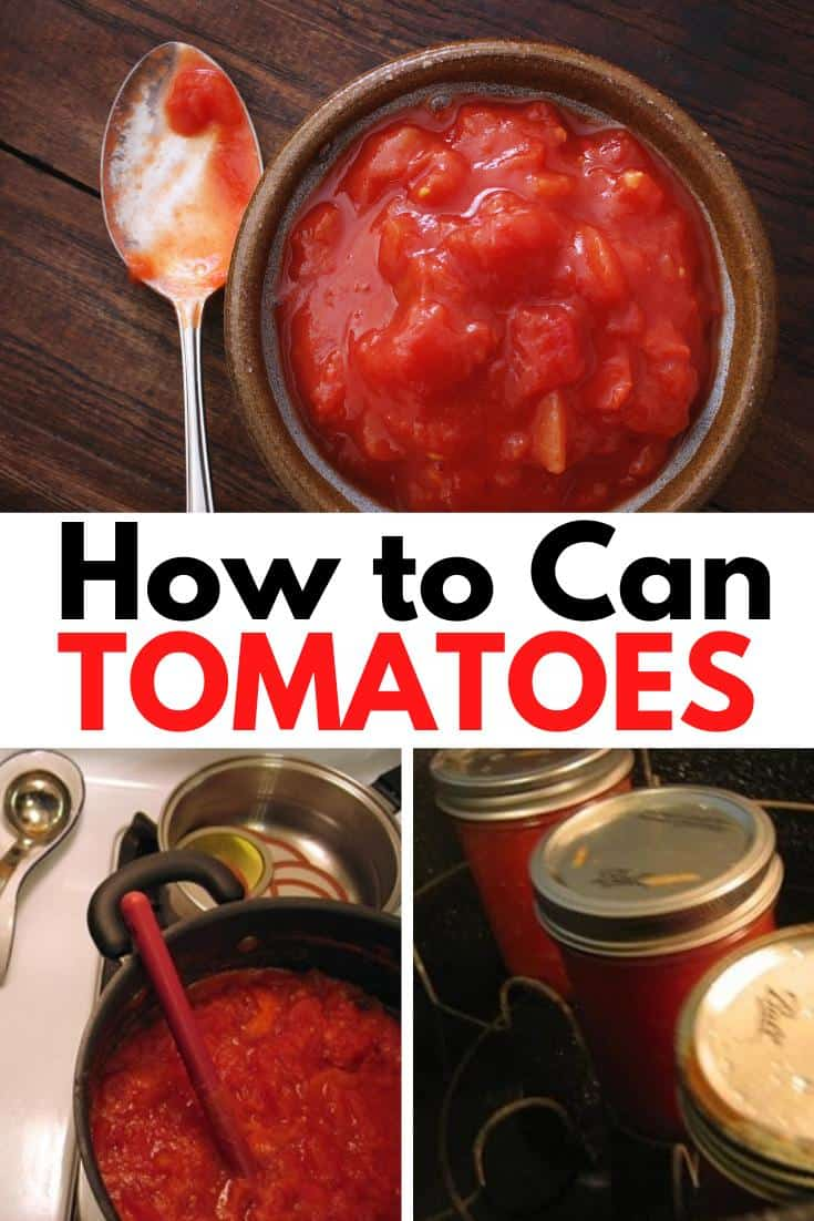 bowl and pot of canned tomatoes