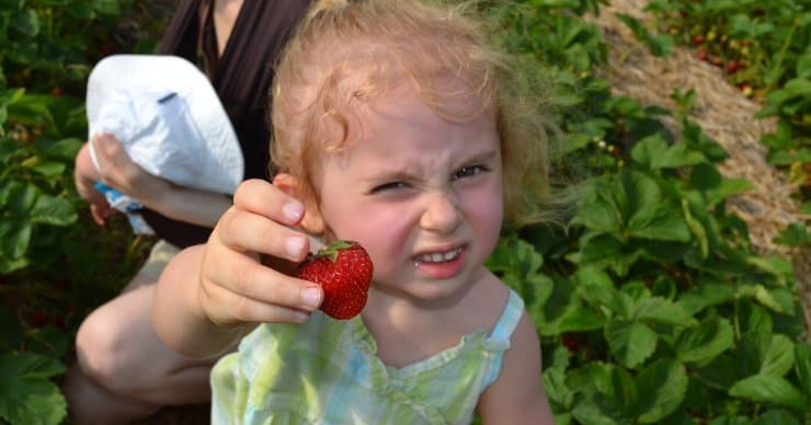 girl holding a strawberry