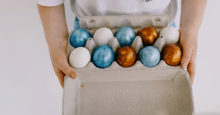 repurposing kitchen egg carton container