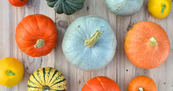 Winter squash assortment