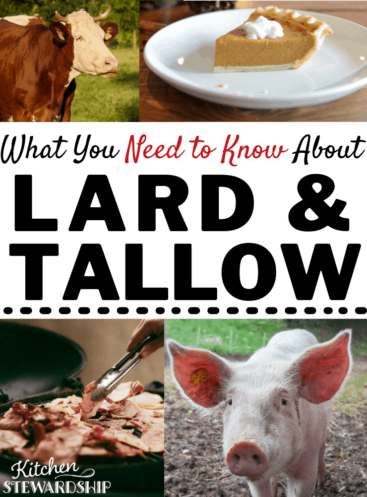 What you need to know about lard and tallow?