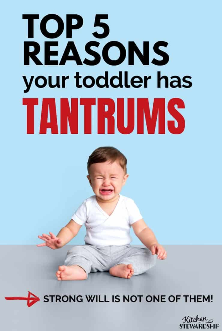 Top 5 reasons your toddler has tantrums